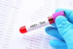 Xét nghiệm chỉ số AMH là gì?